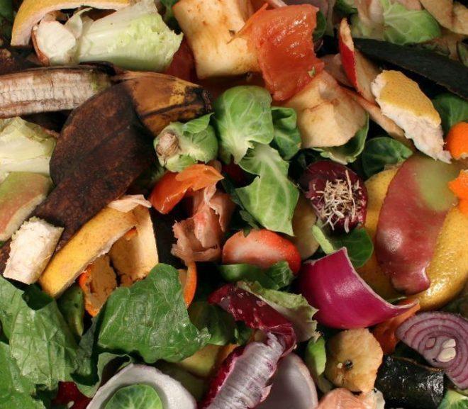 ¿Qué se puede compostar y qué no?
