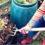 Los 6 problemas más comunes del compost