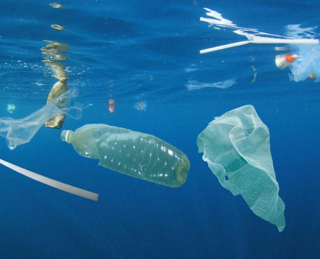 ¿Qué son los plásticos biodegradables?