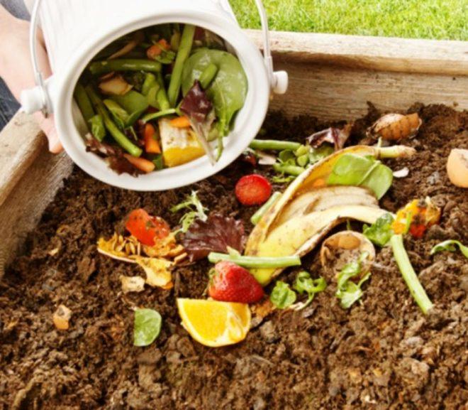 Tip #3: Haz Tu propio Compost Casero